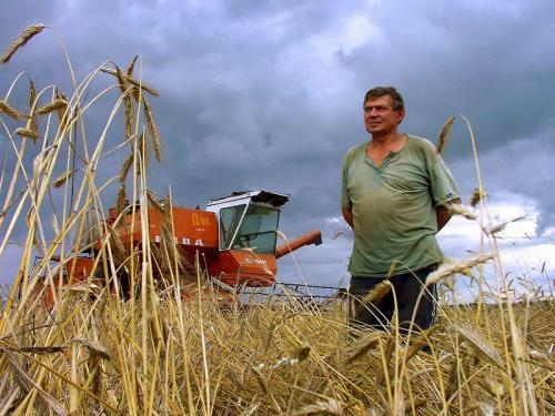 Минтруд расширит список профессий, по которым полагается сельская надбавка к пенсии 25%