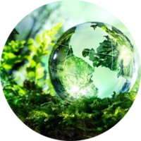 Предлагается ввести в НК РФ регулирование экологического налога