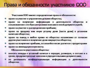 Права и обязанности учредителя ООО