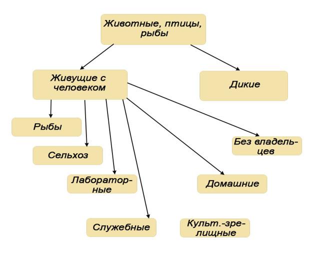 Закон о чипировании животных в россии
