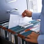 Выписка из ЕГРИП для ИП - какие сведения содержит и как получить