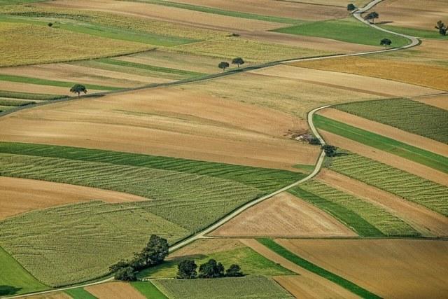 Комментарий 16248 к статье: Договор переуступки прав аренды земельного участка - образец