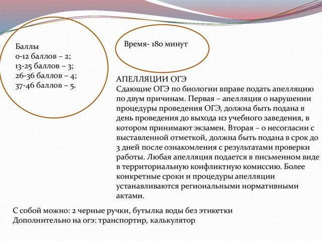 Апелляция результатов ГИА (ОГЭ, ЕГЭ)